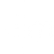 SLIMTM - The Simple Locking Intra Medullary System